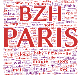 sorties des extensions BZH et PARIS pour vos noms de domaine