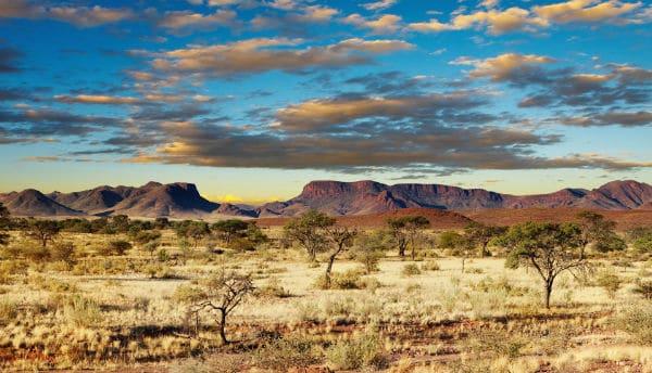 safebrands accrédité pour vendre des noms de domaine co.bw botswana